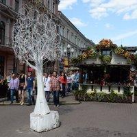 ЧуднОе дерево Арбата :: Алексей Казаков