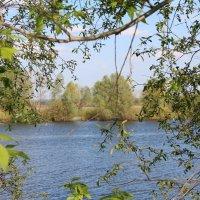 Тихое местечко на реке Мёше :: Marina Clement