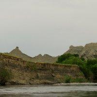 река Алазани . :: Alla Swan