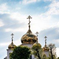 Войсковой собор князя Александра Невского :: Руслан .