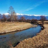 Весенний поток :: Анатолий Иргл