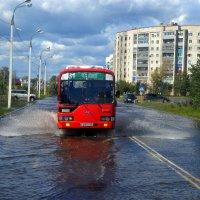 Сквозь наводнение :: Мария Коледа