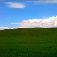 Высокий холм :: °•●Елена●•° Аникина♀