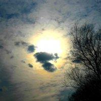 Солнце :: Сандра Гро