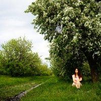 отдых .умиротворение. :: Анастасия Сидорова