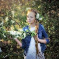 весна, солнце.... :: Ольга Гребенникова