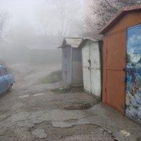 Профессионально изучаем композицию. :: Tatiana Evtushenko