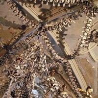 Интерьер потолка готического собора в Седлеце :: Lukum