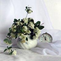 Белые невесты :: Наталья (D.Nat@lia) Джикидзе (Берёзина)