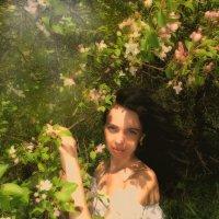 весна :: Марина Белкина
