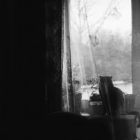 melanсholy :: Алина Дорофеева