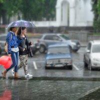 Майский дождь :: Лидия Цапко
