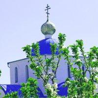 Храм в честь Всех Святых, в Земле Российской Просиявших :: TATYANA PODYMA