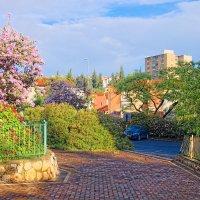 Городской пейзаж :: Тарас Леонидов