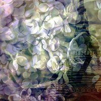 Пасмурная весна :: Ирина Сивовол