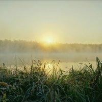 Холодный осенний восход на оз.Свято :: Igor Andreev