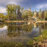 Весенний день на берегу пруда :: Юлия Батурина