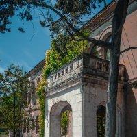 музей в Херсонесе :: Sergey Bagach