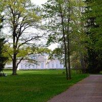 Весенний парк :: Алексей К