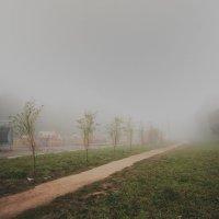 туман_. :: Анастасия Фролова