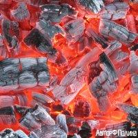 Море огня с тонущими в нем угольками :: Polina Pavliuk
