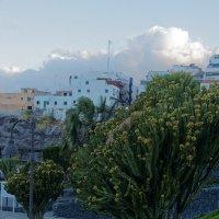 На берегу океана, Пуерто де Сантьяго, Тенерифа :: Witalij Loewin