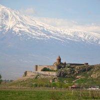 Хор-Вирап, Армения :: Надежда Водорезова