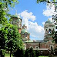 Свято-Александро-Невский храм :: Нина Бутко