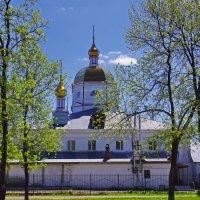 Свято-Екатерининский собор. :: Ирина Нафаня