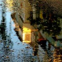 майский дождь прошел :: Александр Прокудин