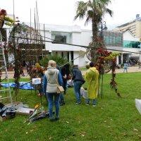 Подготовка к международному цветочному фестивалю :: Дарья Fox