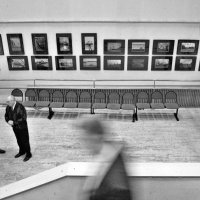 Альбом «Открытие выставки клуба Альфа 24.02.16г.» :: Юрий Журавлев