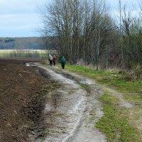 Весенними дорогами :: Валерий Талашов