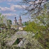 Старинный городок Нерехта , осн. в 1214 г. :: Святец Вячеслав