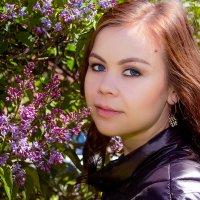 сирень :: Елена Бологова