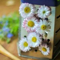 весна на кухне :: Тася Тыжфотографиня