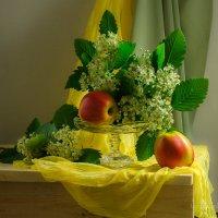 Цветок боярышника :: Вера