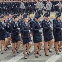 Очаровывающие войска. :: Анатолий Щербак