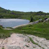 Путь к озеру. :: Елена Тренкеншу