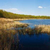 Альбертинское озеро, Слоним :: Aleh Nekipelau