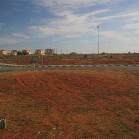 красная плодородная почва Кипра :: tgtyjdrf