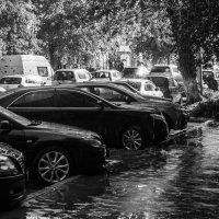слепой дождь :: cfysx