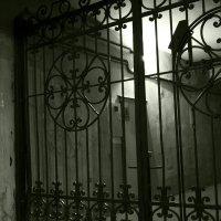 Питерский дворик... :: Владимир Питерский