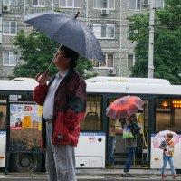 Зонтики :: Андрей Майоров
