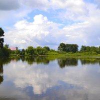 Пироговский пруд. Отражение. :: Алексей Могилёв