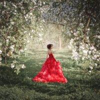 В яблоневом саду... :: Дмитрий Додельцев