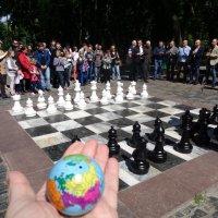 Язык шахмат понятен во всём мире. :: Алекс Аро Аро