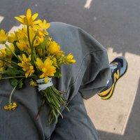 Здравствуй, весна! :: Ирина Данилова