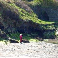 Прогулка в прибрежном парке :: Natalia Harries