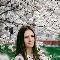 цветение :: Юлия Алексеева